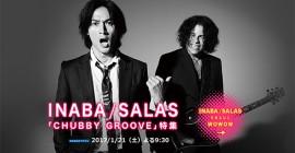 INABA/SALAS 1/21にWOWOWで「CHUBBY GROOVE特集」を放映!